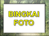 Bingkai Foto